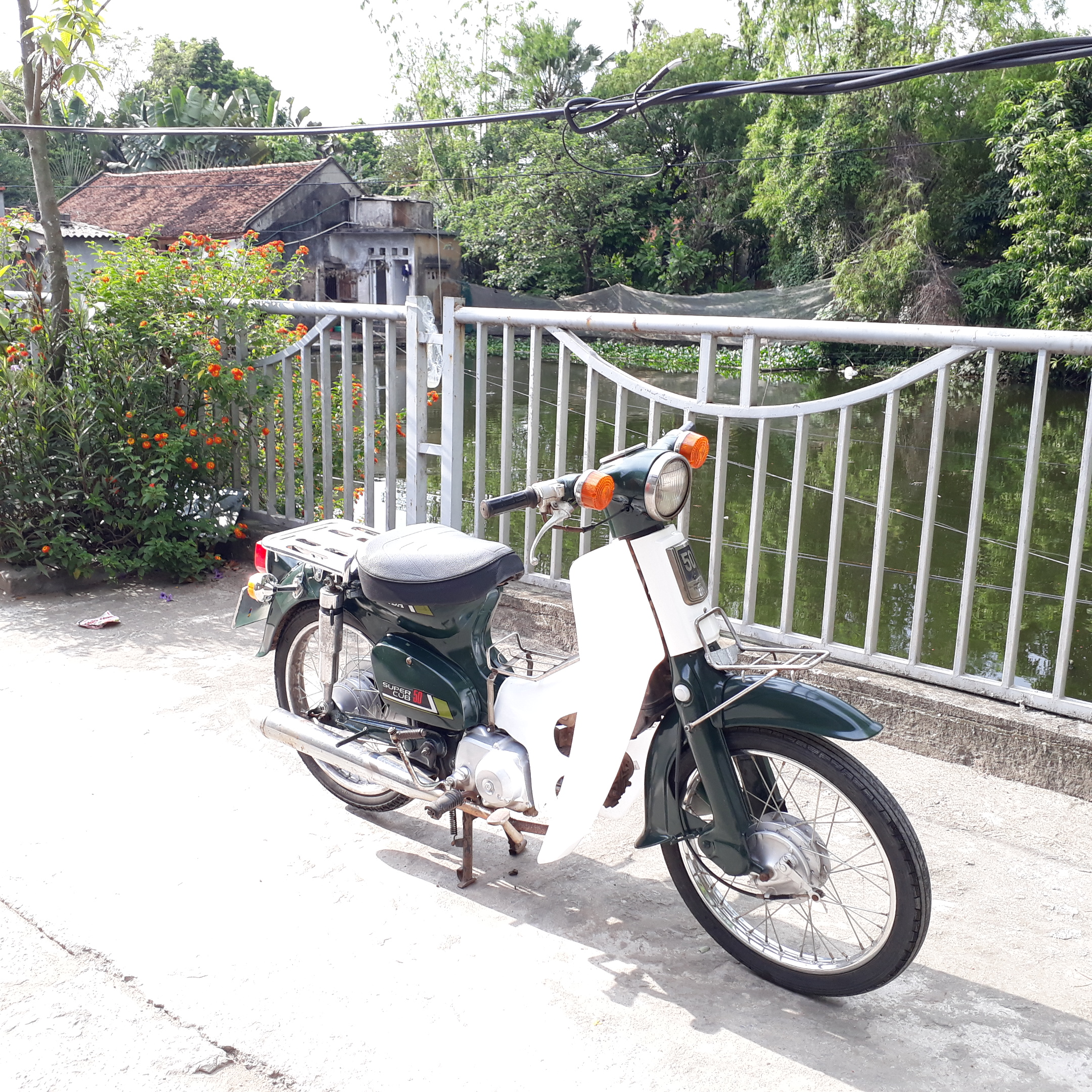 Cub 81 Honda Nhật Bản loại 50cc biển số Hà Nội 29