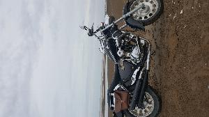 Harley Davidson  sản xuất năm 2010