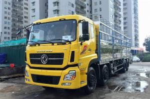 Dongfeng Khác sản xuất năm 2019 Số tay (số sàn) Xe tải động cơ Dầu diesel
