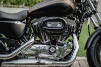 Harley Davidson Custom 1200cc Chính Hãng 100%