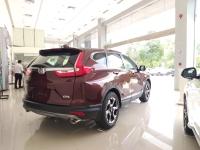 Honda CR-V sản xuất năm 2019 Số tự động Động cơ Xăng