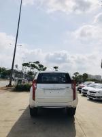 Mitsubishi Pajero sản xuất năm 2019 Số tay (số sàn) Dầu diesel