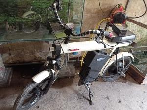 Xe đạp điện độ