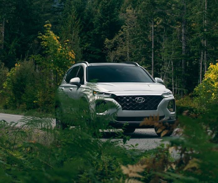 Hyundai Santafe 2020, đủ màu giao ngay 3